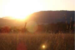 Zimbabwean_Sunset